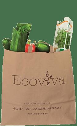 Ekologisk vegetarisk gluten- och laktosfri